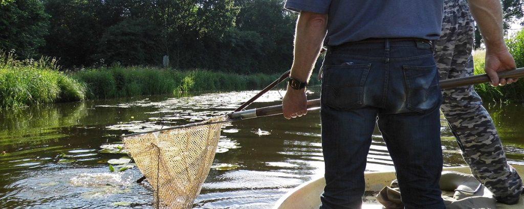 Heubach Hausdülmen Fischbestand