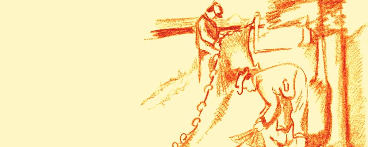 Netzfischerei Zeichnung