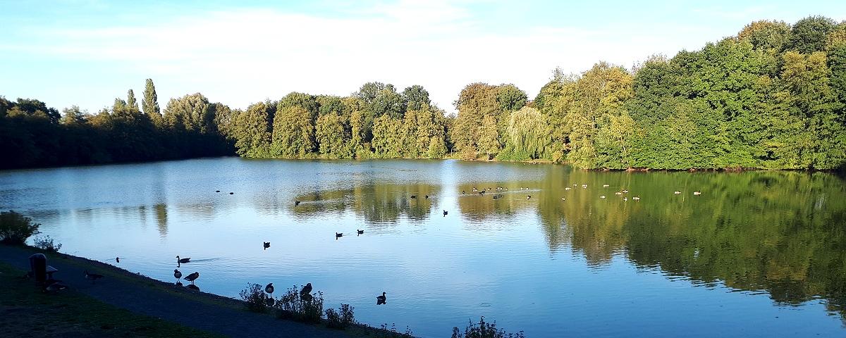 Barkenberger See Dorsten Wulfen